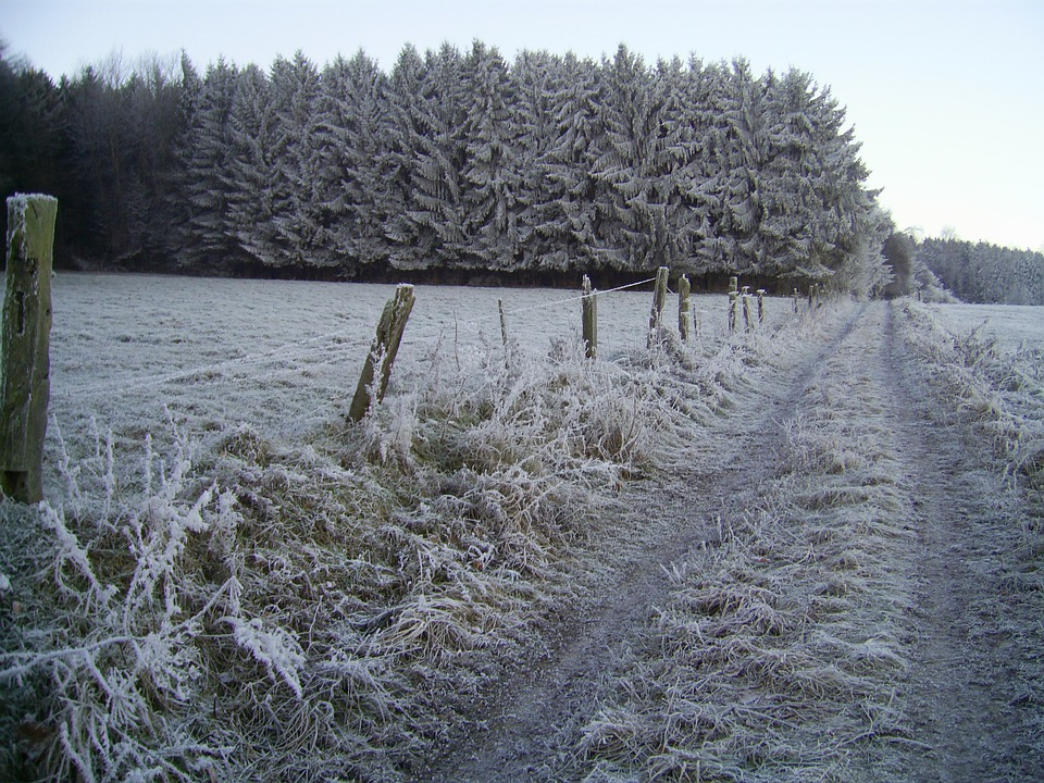 Winter, Away, Iced, Cold, White