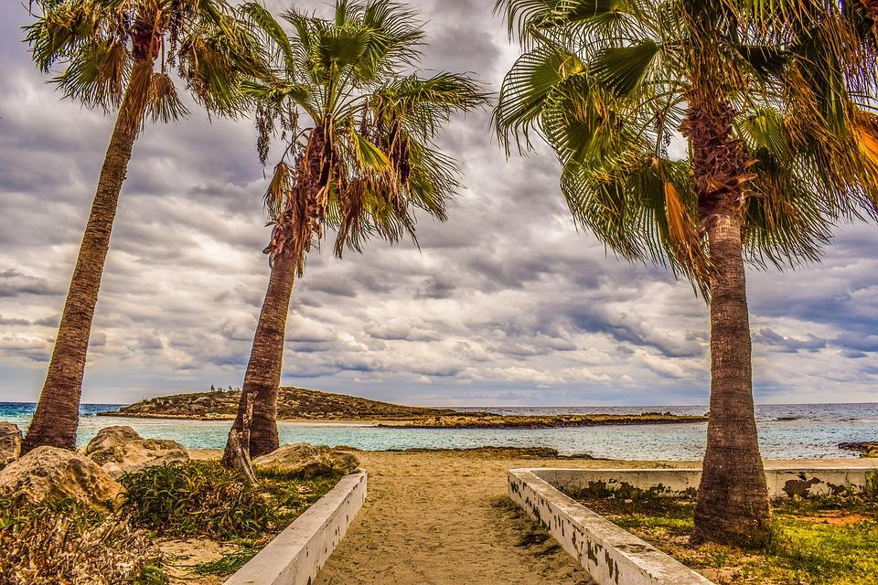 Cyprus, Ayia Napa, Nissi Beach, Autumn, Palm Trees