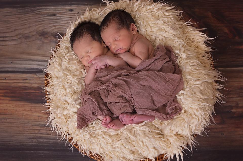 Twins, Boys, Babies, Sucklings, Newborn, Male, Together