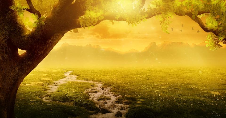 Background, Fantasy, Landscape, Tree, Bach, Meadow