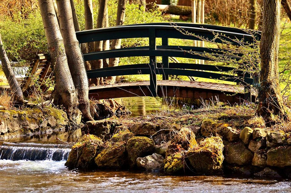 Bridge, Bach, Water, Nature, Bridge Brook, Web, Trees