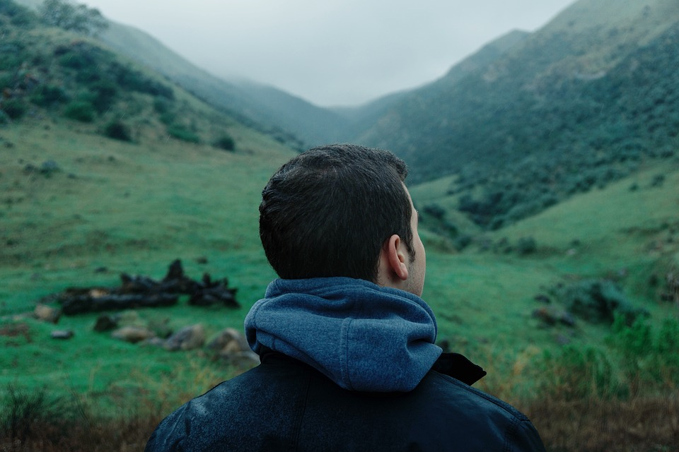 Guy, Man, Male, People, Back, Contemplate, Head, Nature