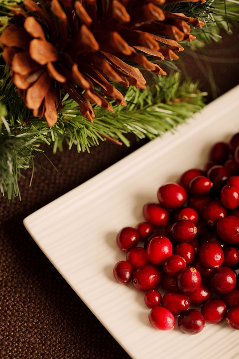 Christmas, Background, Berry, Cranberry, Diet, Eating