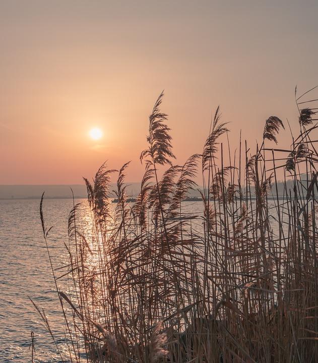 Background, Black Sea, Bulgaria, Coastline, Golden Hour