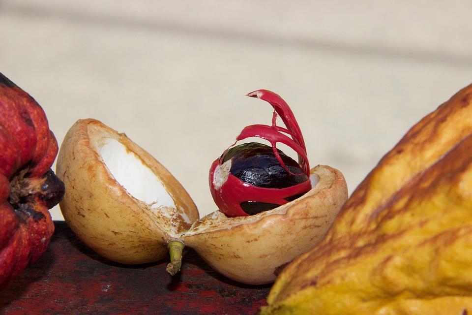 Food, Fruit, Healthy, Background, Autumn, Plant