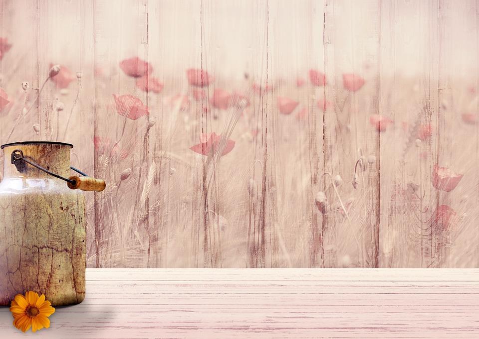 Background Image, Flowers, Milk Can, Klatschmohn, Wood