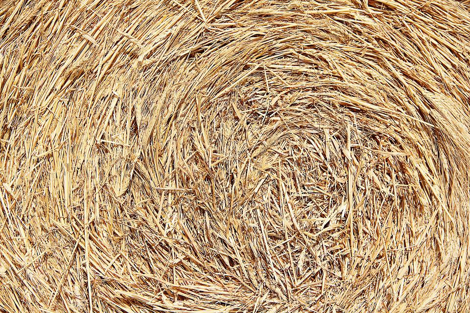 Texture, Straw, Background, Hay, Natural Material