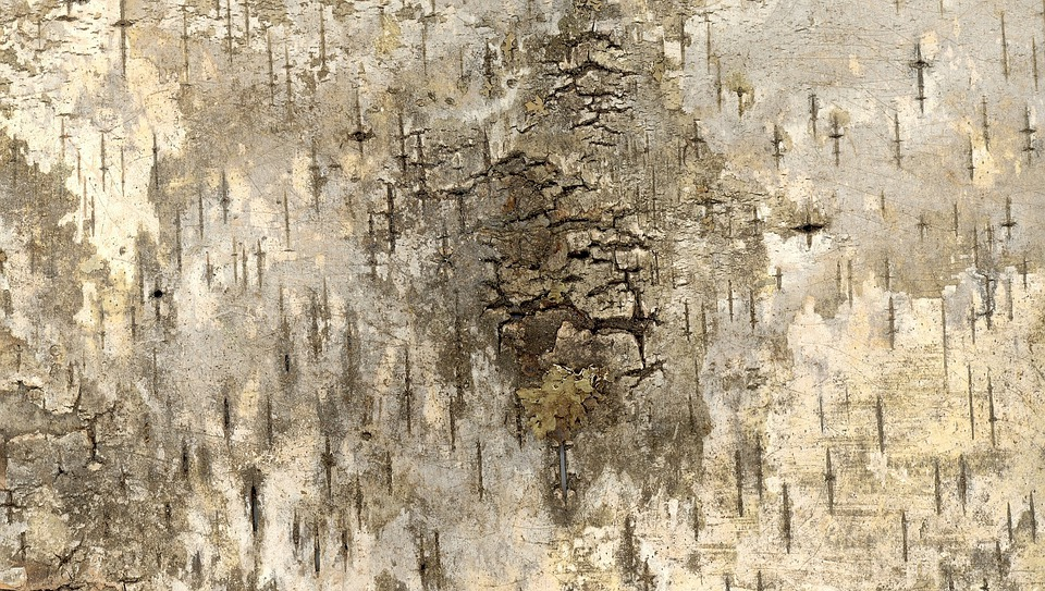 Bark, Grunge, Texture, Background, Scrapbook, Art