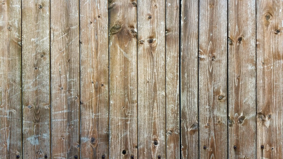 Wood Grain Texture free photo background texture textures wood grain structure - max