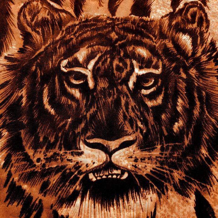Background, Tiger, Animal, Paper, Scrapbooking