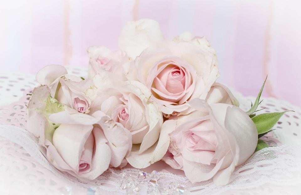 Free photo background vintage pink romantic roses dusky pink max pixel roses romantic background pink dusky pink vintage mightylinksfo