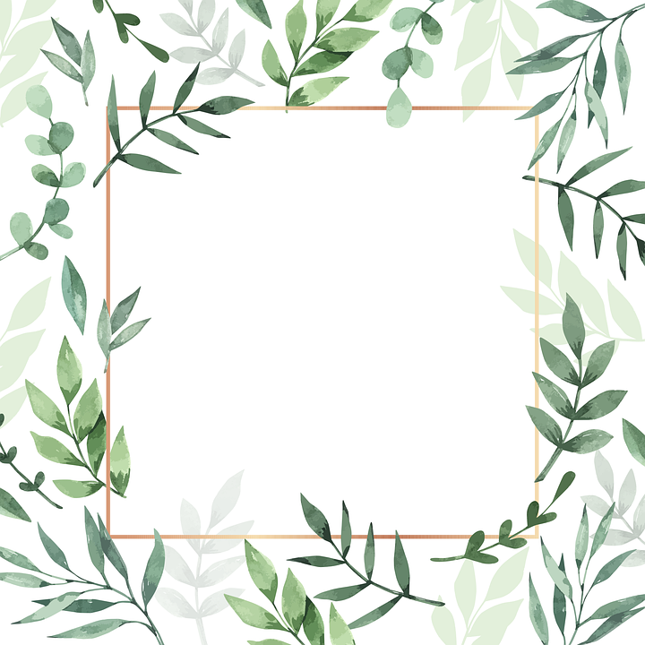 Frame, Leaves, Watercolor, Background, Plant, Nature