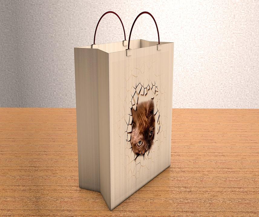 Bag, Paper, Empty, Carrying Bag