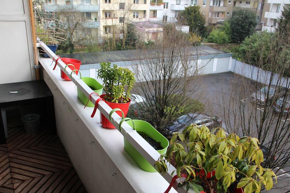 Balcony, Flowerpot, Flower, Parking, Balcony Plant