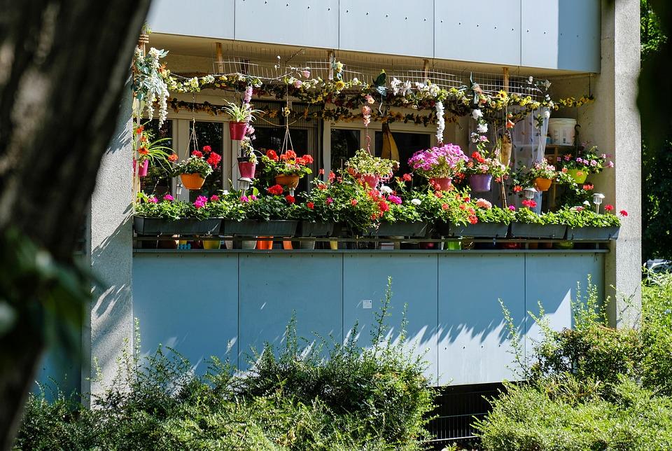 Balcony, Flower Box, Summer, Balcony Plant, Window Sill