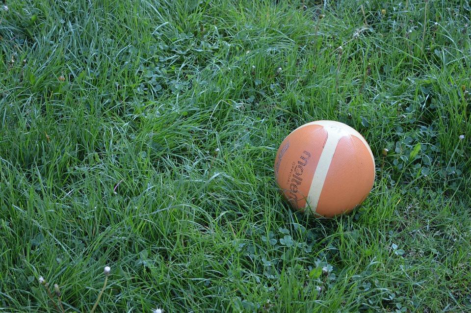Ball, Orange, Grass, Grey