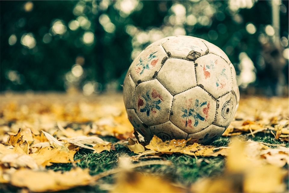Soccer, Ball, Sports, Leaves, Grass, Ground