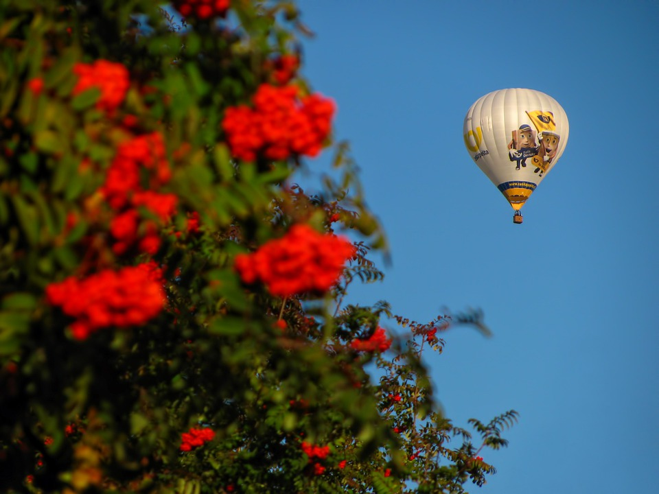 Balloon, Hot Air, Fly, Float, Fun, Recreation, Flying