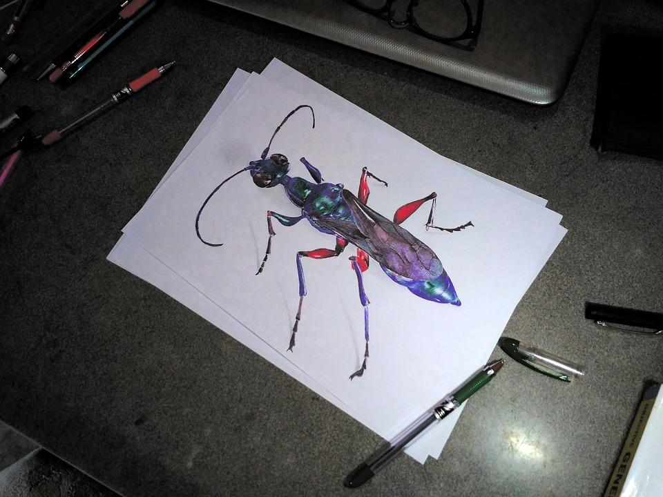Emerald Cockroach Wasp, Ballpoint, Ballpoint Art