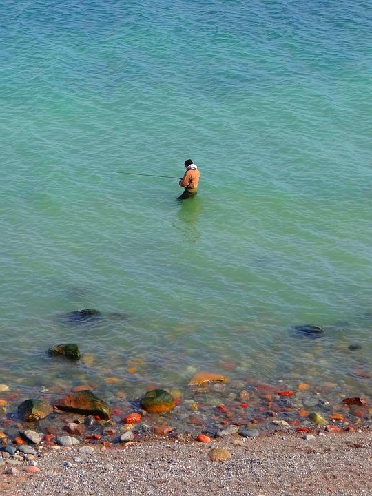 Angler, Baltic Sea, Coast, Sea, Fishing, Water