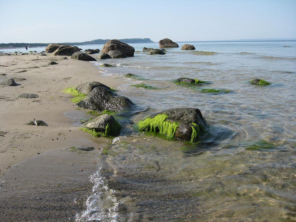 Baltic Sea, Beach, Nature, Water, Göhren