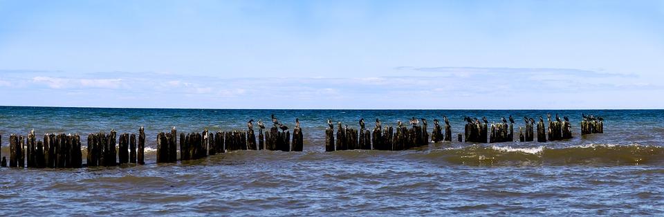Groynes, Coastal Protection, Baltic Sea, Surf, Wave