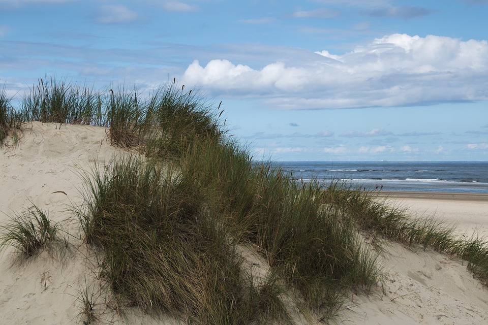 Dune, Baltrum North Sea, East Frisia, Beach, Sand