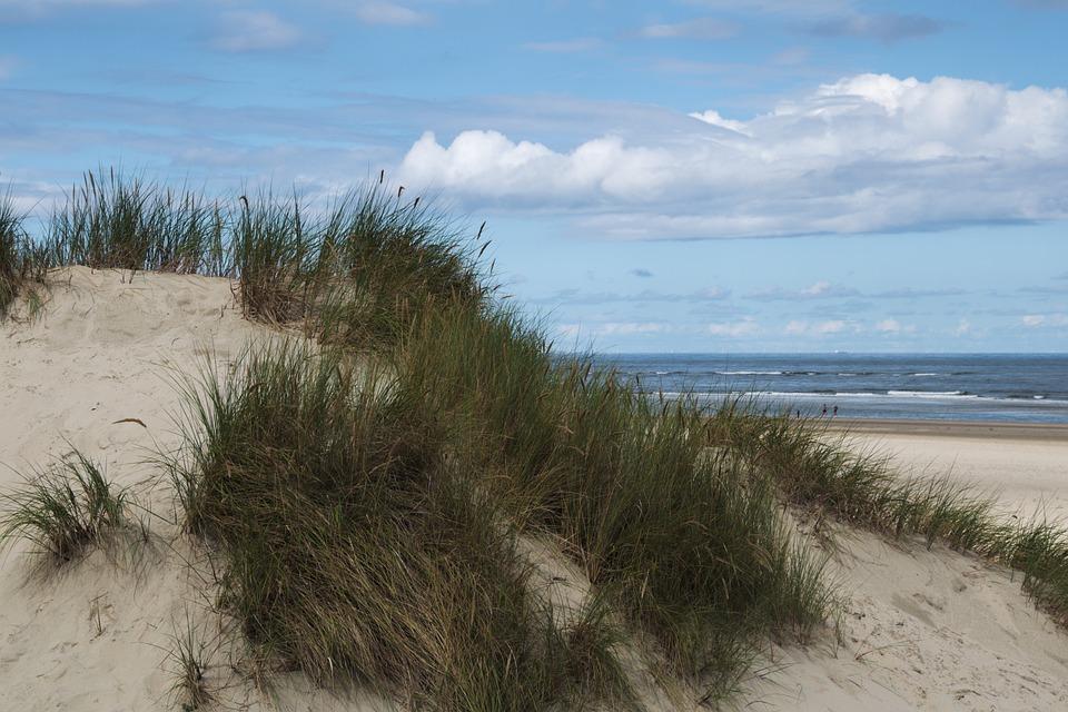 Dune, Baltrum North Sea, East Frisia, Beach, Sand