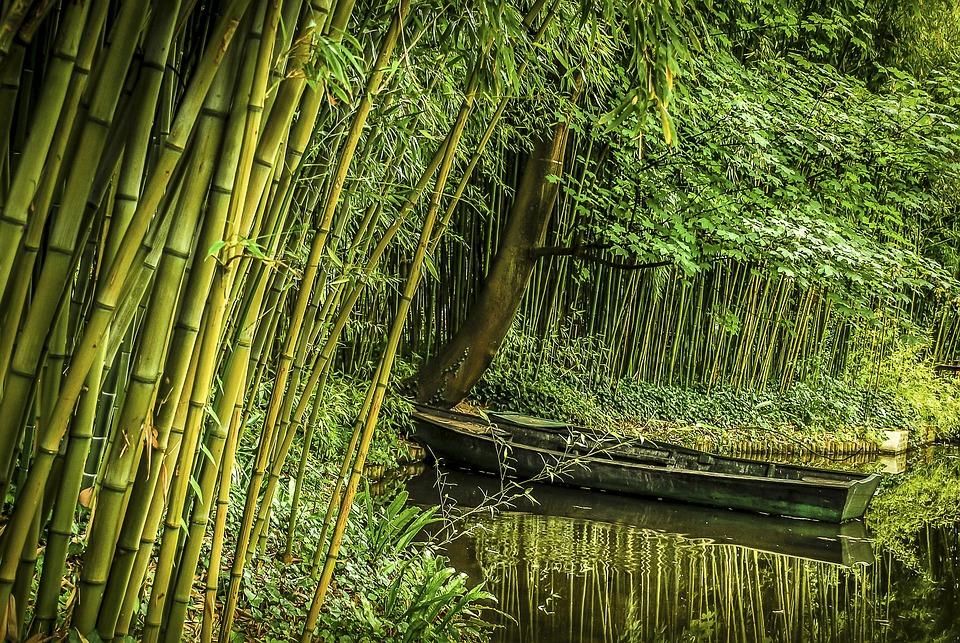 Bamboo, Boat, Vietnamese, Water, Landscape, Myanmar