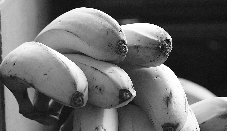 Image, Black And White, Banana, Banana Tree, Fruit