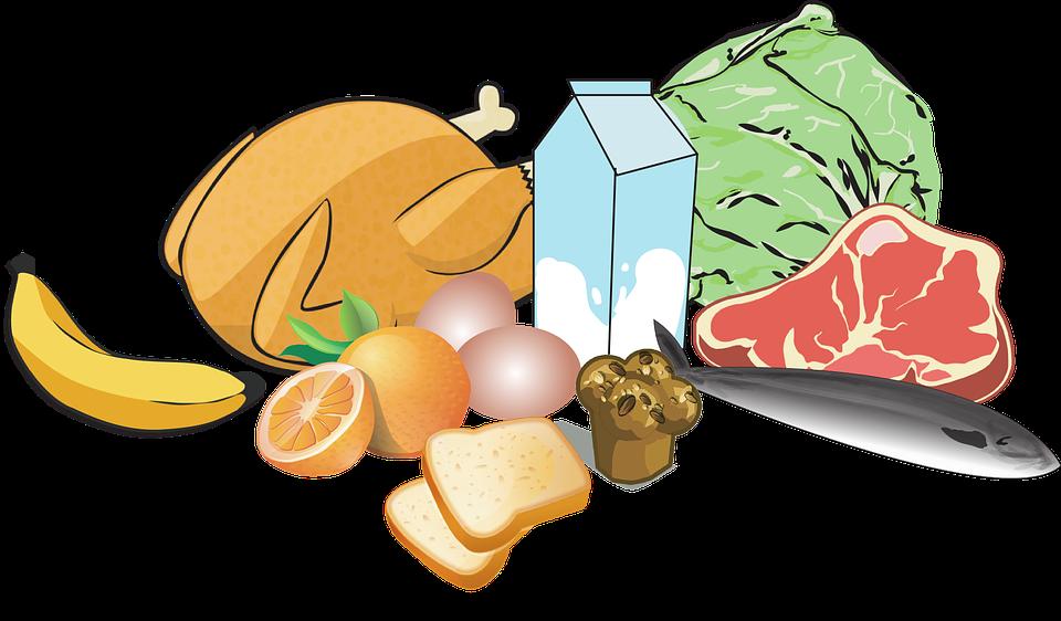 Chicken, Bananas, Milk, Feed