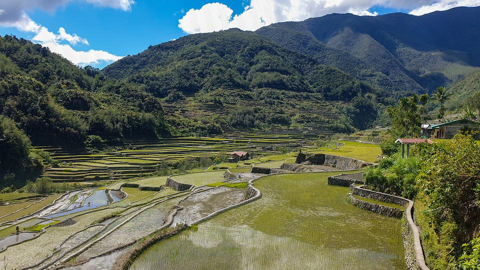 Rice, Terraces, Philippines, Banaue, Mountains