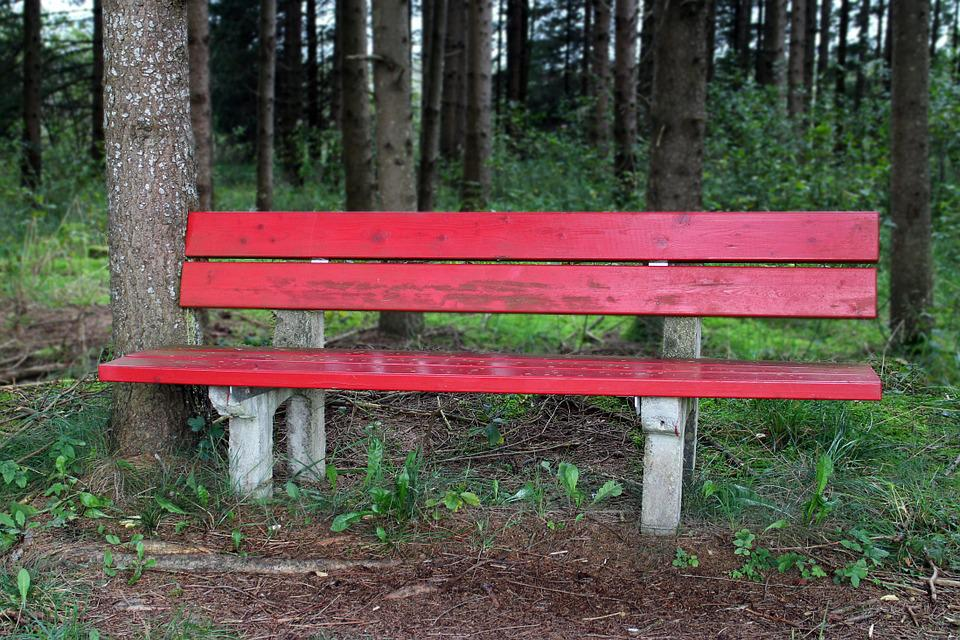 Bench, Bank, Seat, Nature, Out, Sit, Click, Rest