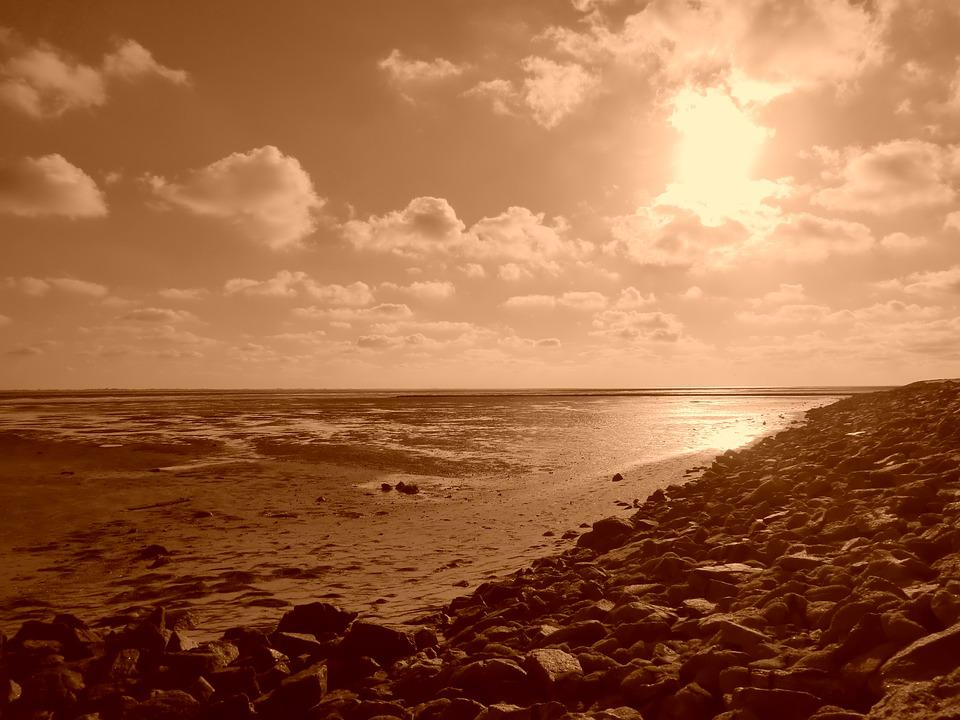 Sepia, Landscape, North Sea, Bank, Sea, Sky, Nature