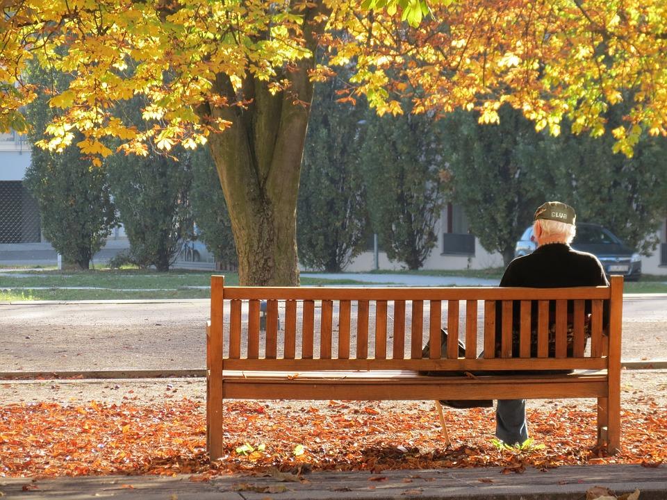 Ostfildern, Autumn, Lonely, Man, Tree, Bank