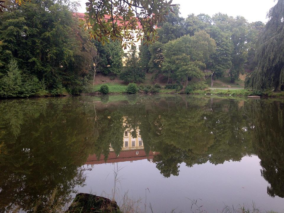 Lake, Water, Mirroring, Bank, Tree, Nature, Villa, Park