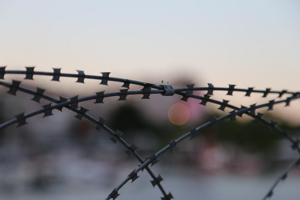 Barb Wire, Fence, Barbed Wire, Wire, Barbed, Security