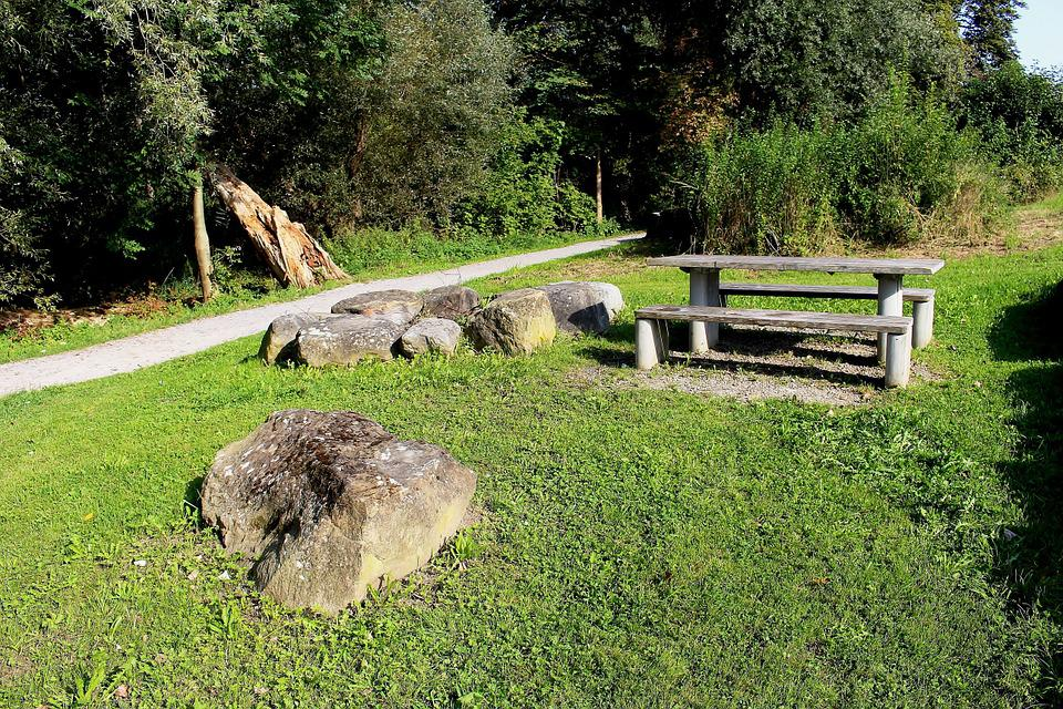 Leisure, Edge Of The Woods, Barbecue Area, Table