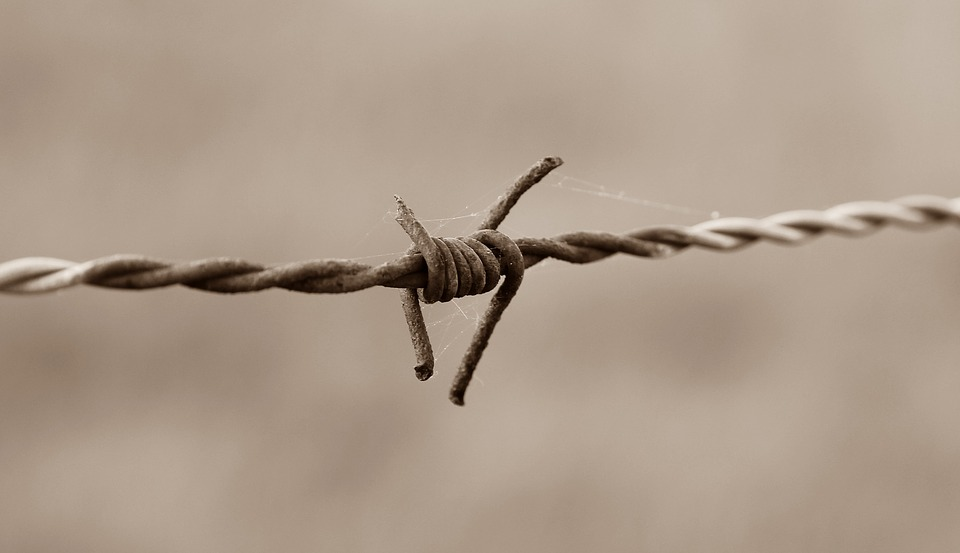Barbed Wire Fence, Barbed Wire, Fence, Old, Metal