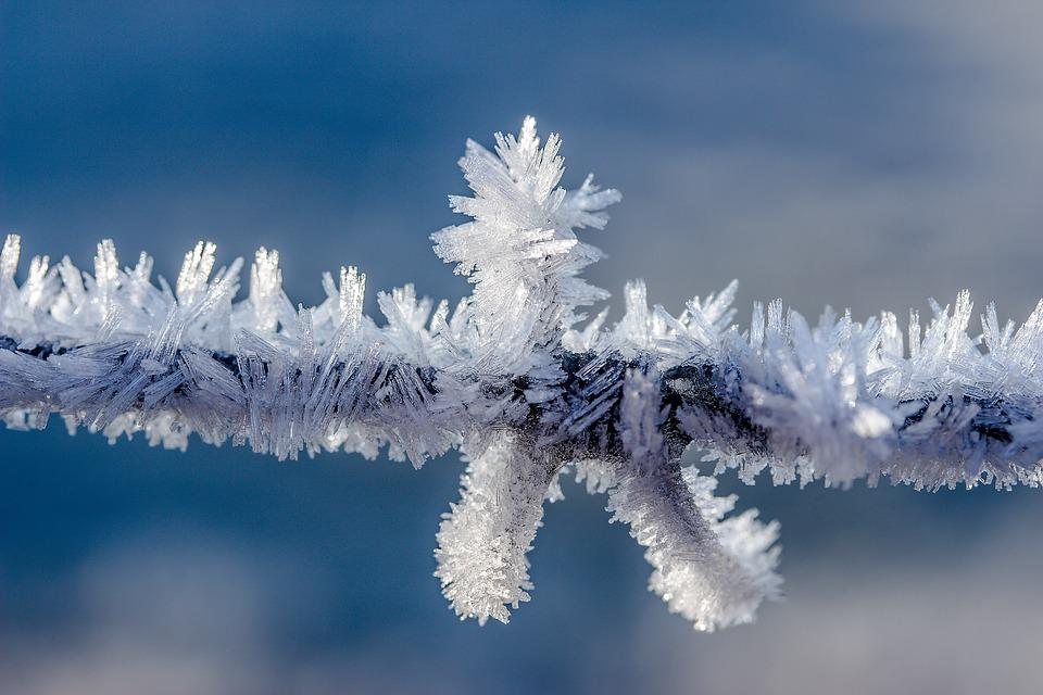 Barbed Wire, Frost, Frozen, Cold, Ice, Crystals
