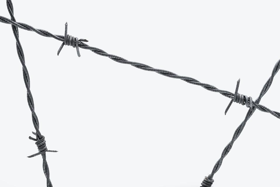 Free photo Barbed Wire Security Wire Fence Demarcation - Max Pixel