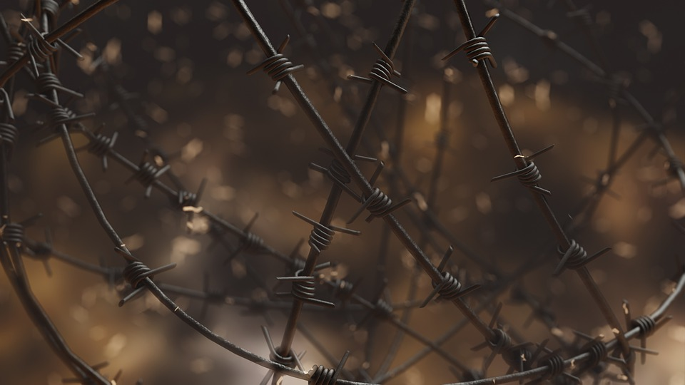 Totalitarianism, Barbed Wire, There Is No Freedom