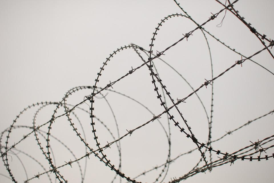 Barbed Wire, This Star, Pain, Sharing, Tabu, Wound, Nib