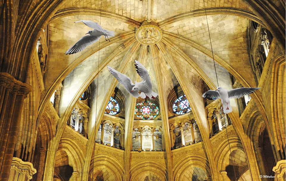 Barcelona, Cathedral, Gulls, Spain, Places Of Interest