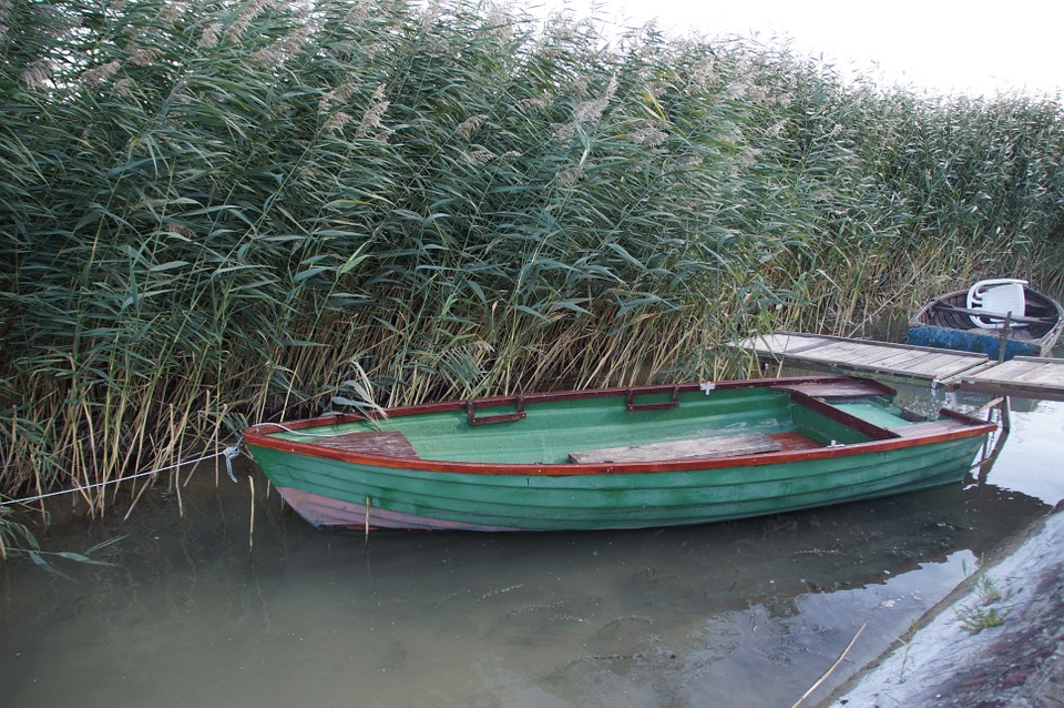 Rowboat, Barge, Reed, Punts, Boat