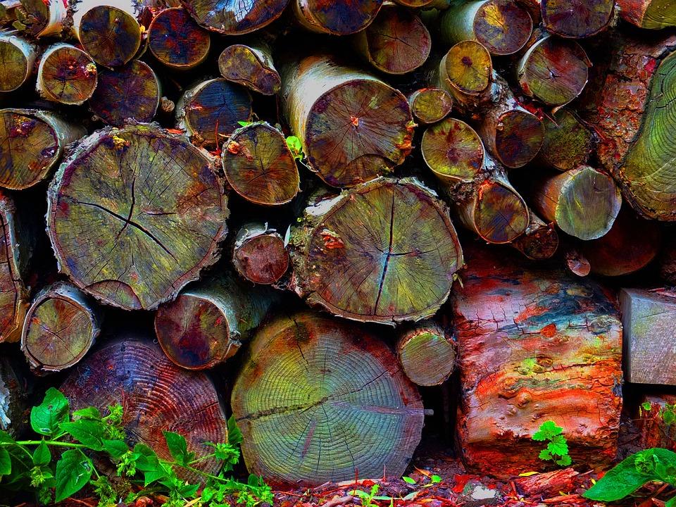 Logs, Wood, Trunk, Bark, Grain, Rustic