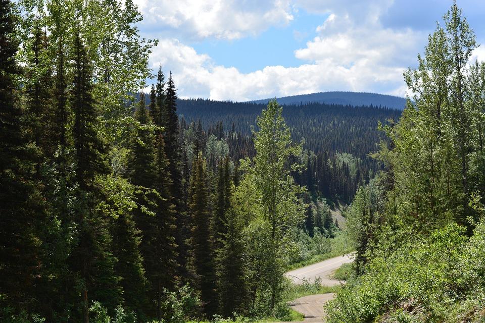 British Columbia, Canada, Barkervillie, Landscape