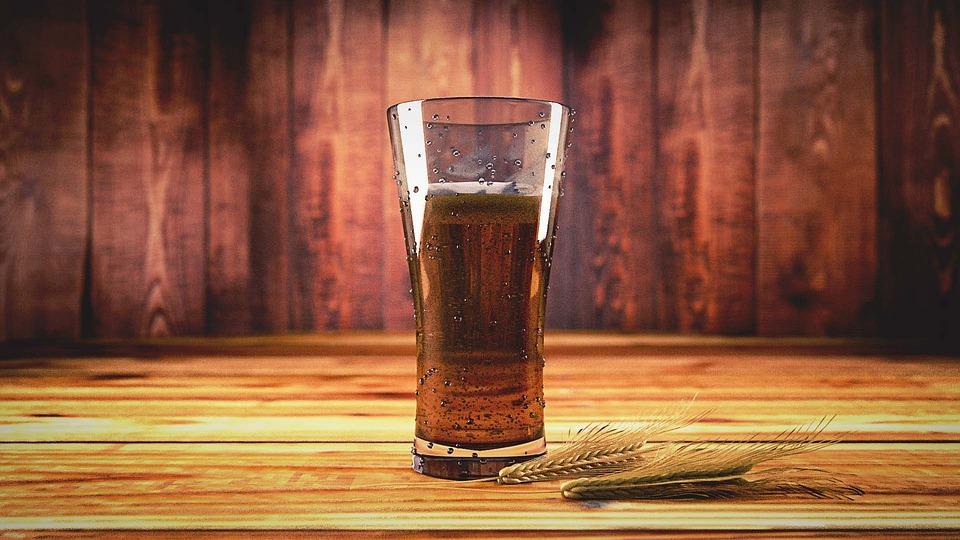 Beer, Tipple, Drink, Glass, Mug, Barley, Malt, Tree