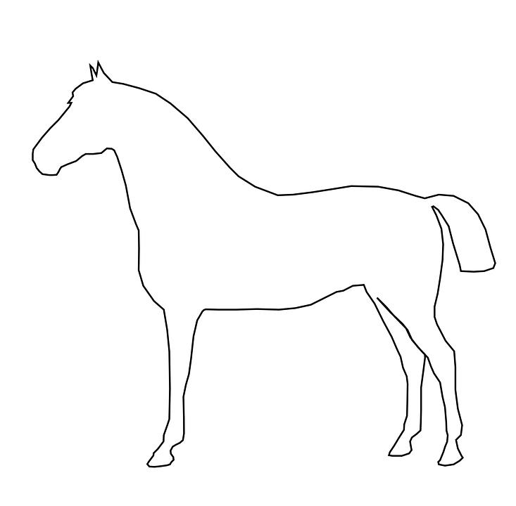 Horse, Animal, Mammal, Barn, Equine