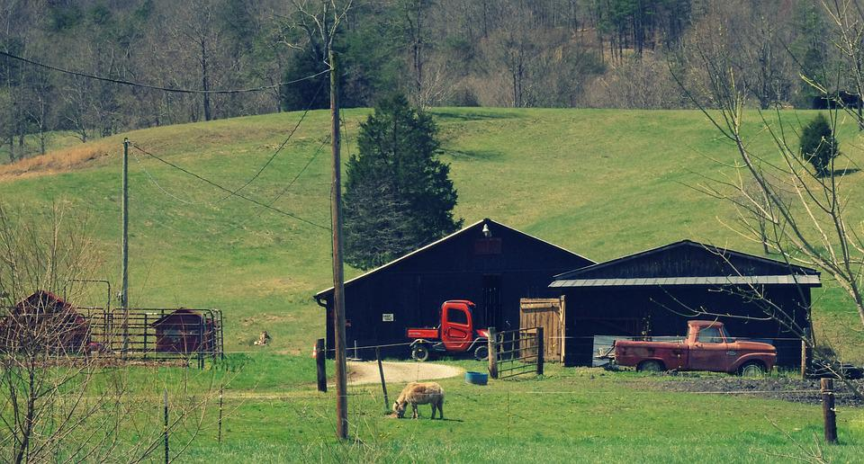Barn, Country, West Virginia, Agriculture, Landscape